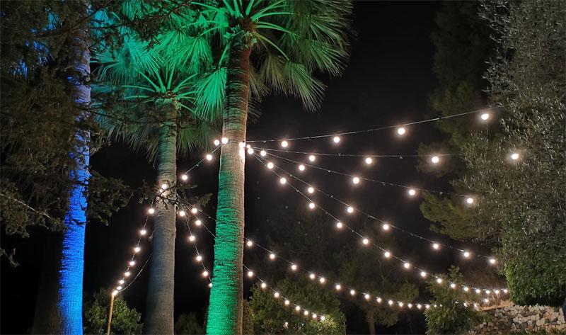 Iluminación de color para árbol